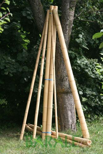 Canne Bambù Arredamento Interni: Canne di bambu diametri vari per ...