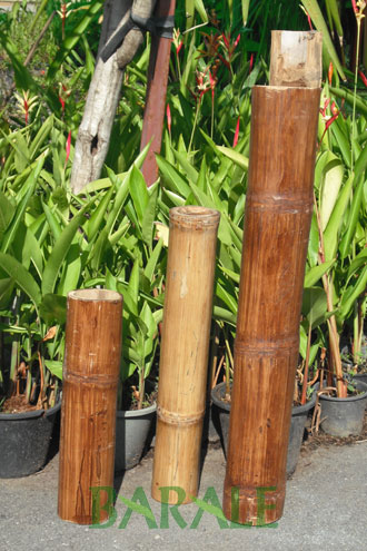 Barale bamboo import and distribution of bamboo canes for Bambu arredamento