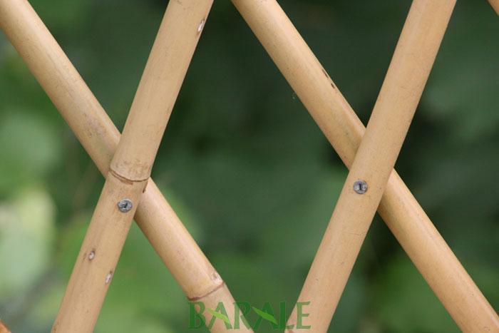 Barale bamboo import e distribuzione canne di bamboo per for Pergolato con canne di bambu